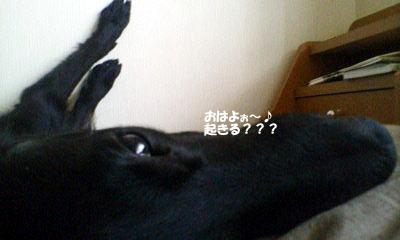 Image01_27
