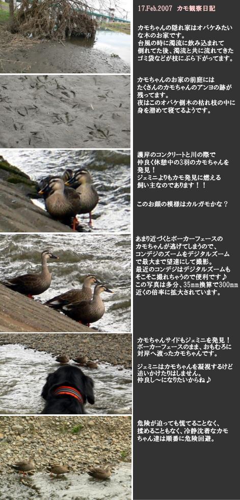 Image01_53